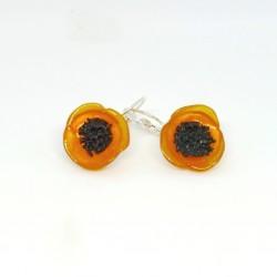 Coquelicots oranges